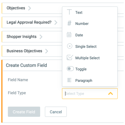 Admin Custom Marketing Brief Field Types